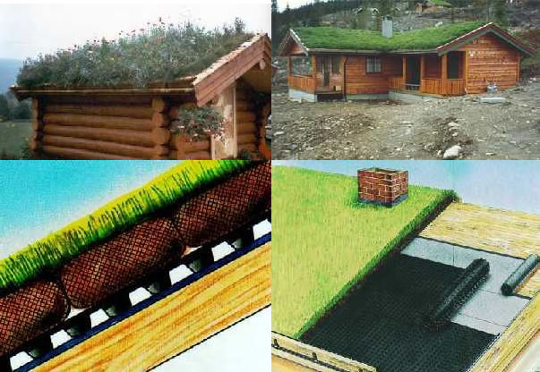 Turf eco friendly roofs